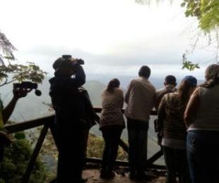 ✅ Colombia el mejor lugar para el avistamiento de Aves, birdwatching bird 2020 ✨
