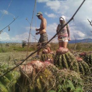 ✅ Oferta Turística San Agustín Arqueologia, Rivera, Betania y Desierto de la Tatacoa con Observación de Estrellas.✌️